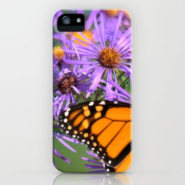 Monarch Butterfly on Wild Asters (square) iPhone Case