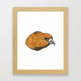Red Crossbill Framed Art Print