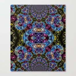 BBQSHOES: Fractal Design 1020C Digital Psychedelic Art Canvas Print