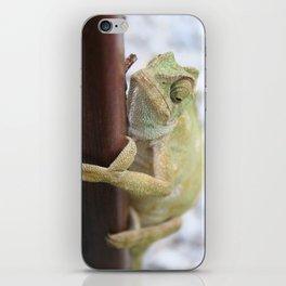 I'm A Bit Of A Chameleon iPhone Skin