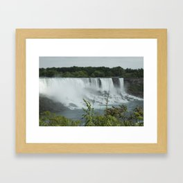 Plants at the Falls Framed Art Print