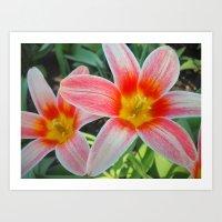 tulips Art Prints featuring Tulips by Vitta