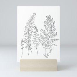 Minimal Line Art Fern Leaves Mini Art Print