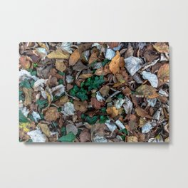 Autumnal leaves bed Metal Print