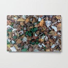 Autumnal leaves bed Metal Print
