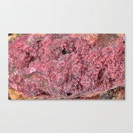 Sphaerocobaltite Canvas Print