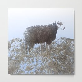 Solitude on straw Metal Print