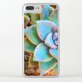 """Bloom where you are planted"" mint green & turquoise cactus close-up photo Clear iPhone Case"