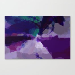 258 Canvas Print