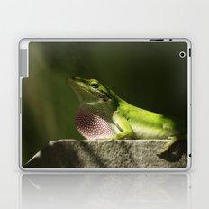 Mating Dance Laptop & iPad Skin