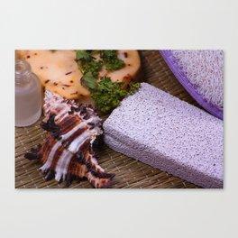 Bath accessories. Canvas Print