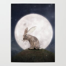 Night Rabbit Poster