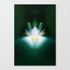 DragonFlower blooms in darkness, lighting fears that lurk inside us Canvas Print