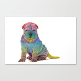 Colorful Sharpei Canvas Print