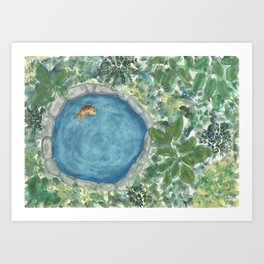 The fish in the pond Art Print
