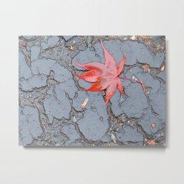 Wet Leaf on Blacktop Metal Print