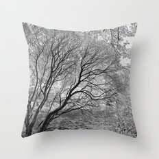 Illusion of Winter Throw Pillow