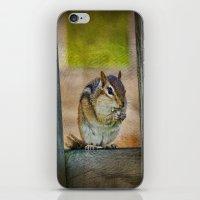vermont iPhone & iPod Skins featuring Vermont Chippy by Deborah Benoit