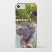 baby elephant iPhone & iPod Cases featuring Baby Elephant by Erika Kaisersot