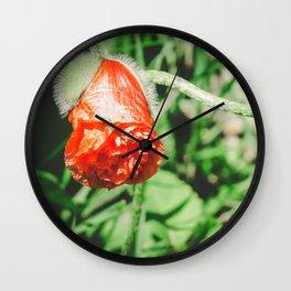 Poppy Love 4 Wall Clock
