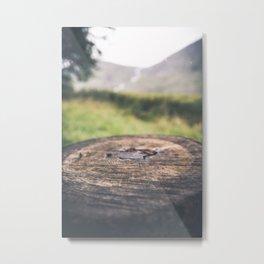 Wood Allen Metal Print
