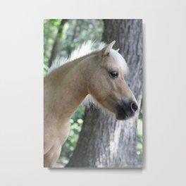 Palomino profile Metal Print