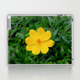 Yellow Flower Laptop & iPad Skin