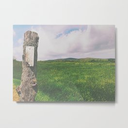 White Blaze • Appalachian Trail Metal Print