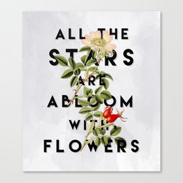 All the Stars Canvas Print