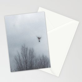 """""""Lori's First Robin"""" Stationery Cards"""