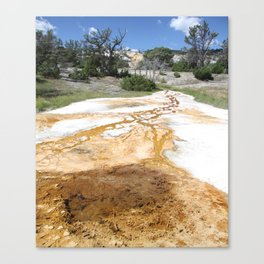 Canary Hot Springs Canvas Print