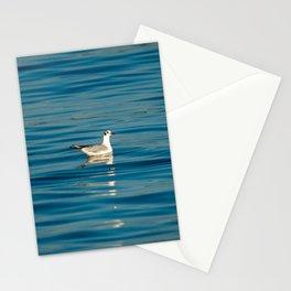 Blackhead gull 1063 Stationery Cards