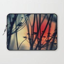 Shapes - dry weeds at sunrise Laptop Sleeve