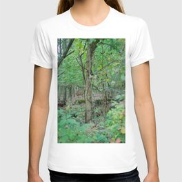 Stag in the Woods T-shirt