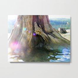 """""""Magical Root.""""  Nature Series #2. Metal Print"""