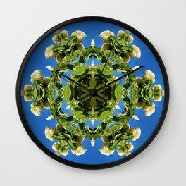 Hydrangea kaleidoscope - white flowers, green leaves, blue sky 161134 k6 Wall Clock