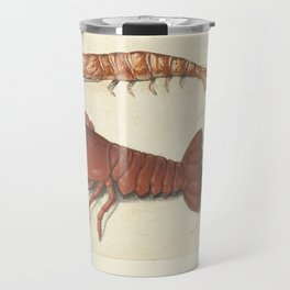 Lobster, Crawfish and Shrimp Vintage Illustration, 1560 Travel Mug