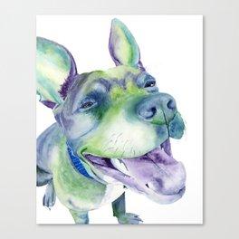 Bluenosed Pitbull Watercolor Painting Canvas Print