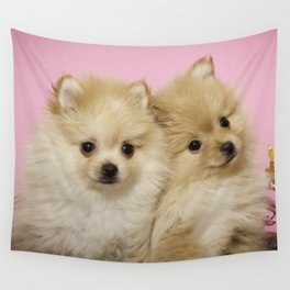 Pink Pomeranian Brothers Wall Tapestry