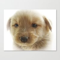 puppy Canvas Prints featuring Puppy by Svetlana Sewell
