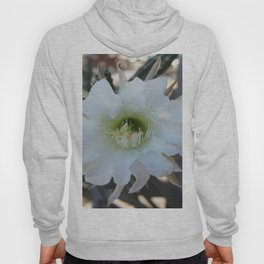 Night Blooming Cactus Hoody
