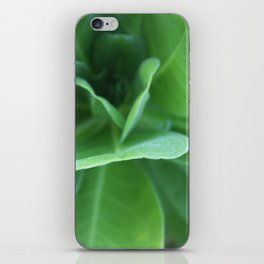 Tropical Sea Greens iPhone Skin