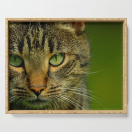 portrait of a cat - #1 Serving Tray