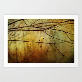 Yellow Songbird in Morning Prayer Art Print