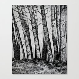 The Row  Canvas Print