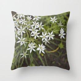 Silvestre Throw Pillow