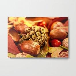 Arbores autumnales effectu Metal Print