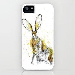 Jack Rabbit I iPhone Case