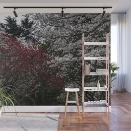Japanese spring blossom in reds and pinks Wall Mural