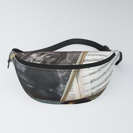 Melody for a Monkey - BERLIN - Germany Fanny Pack